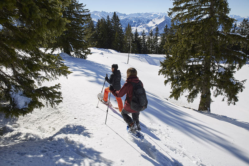 Schneeschuhtrail 1.0 km