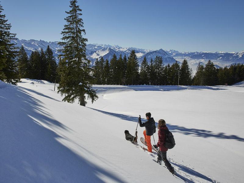 Schneeschuhtrail 3.5 km