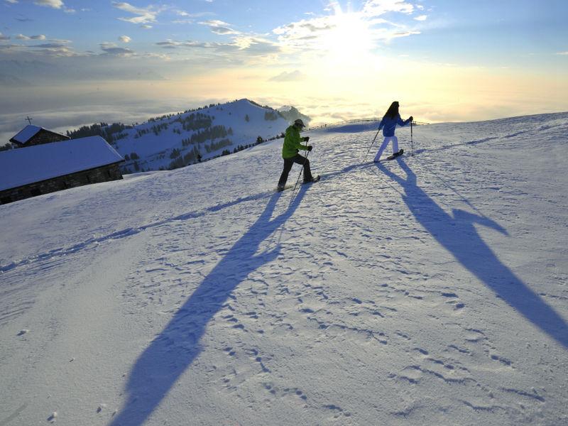 Schneeschuhtrail 1.1km