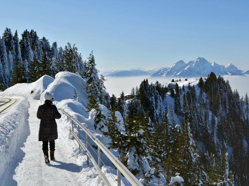 Winterwanderweg Rigi Klassiker