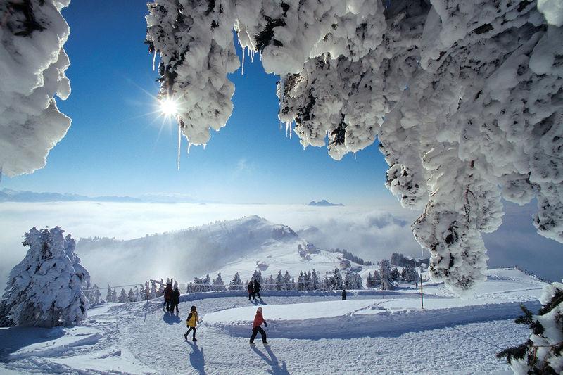 Winterwanderweg Staffel-Kulm