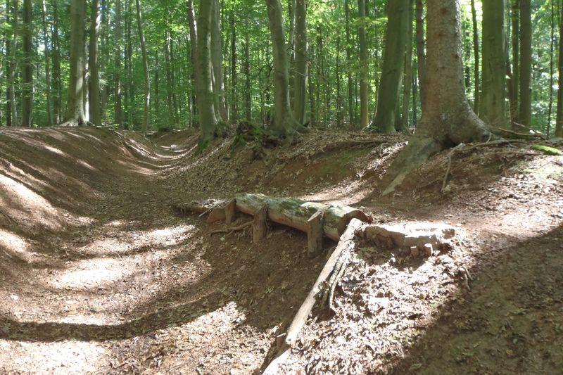 Der Mountainbike-Parcour bietet verschiedene Hindernisse, die mit dem MTB befahren und überwunden werden müssen.