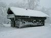 Forstdiensthütte Hohenbogen im Winter