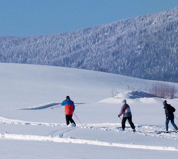 Skiwandern im Langlaufgebiet Hohenbogen im Kötztinger Land - Bayerischer Wald