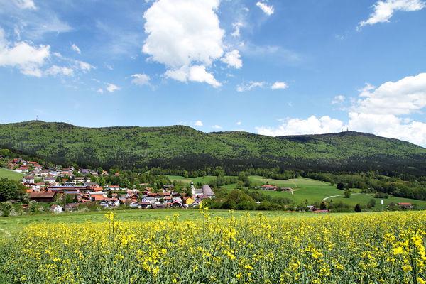 Rimbach Im Bayerischen Wald