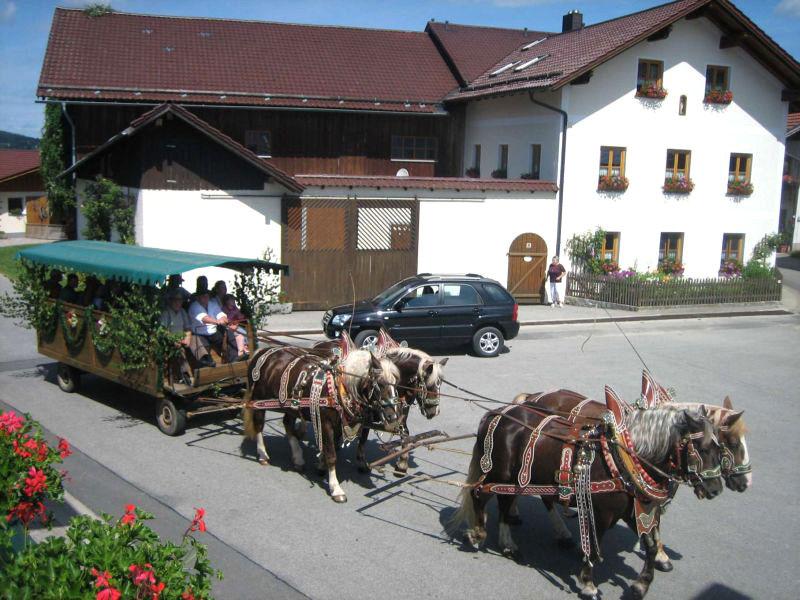 Kutschenfahrt auf dem Ferien-Bauernhof Kroner im Klosterort Rinchnach