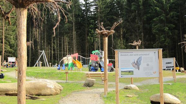 Fledermaus-Waldspielplatz in Rinchnach