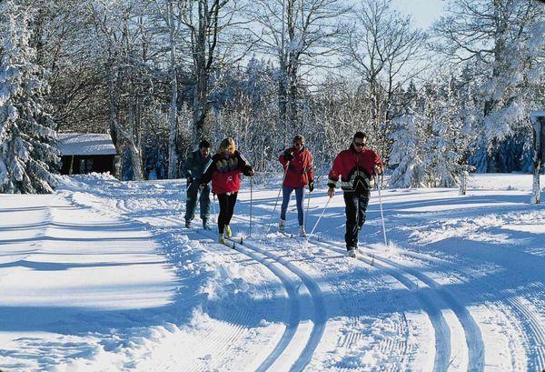 Wintertraum im Langlaufgebiet Kohlau bei Rinchnach im ArberLand Bayerischer Wald