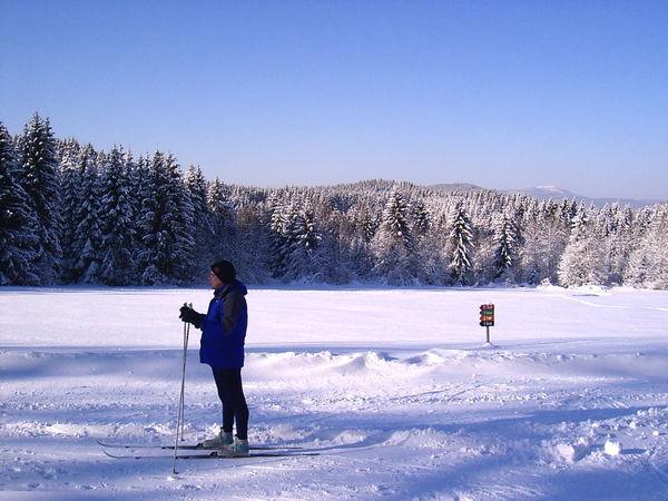 Wintererlebnis im Langlaufgebiet Kohlau bei Rinchnach im ArberLand Bayerischer Wald