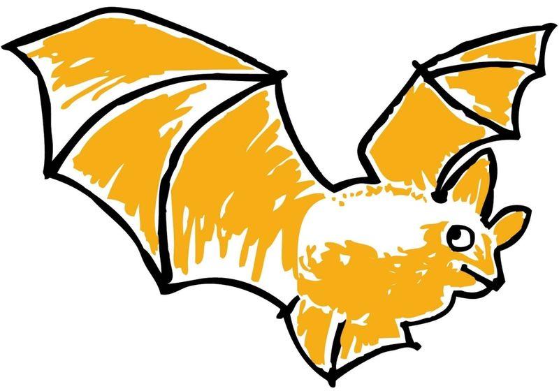 Die Fledermaus ist das Patentier von Rinchnach bem Projekt Tierisch Wild