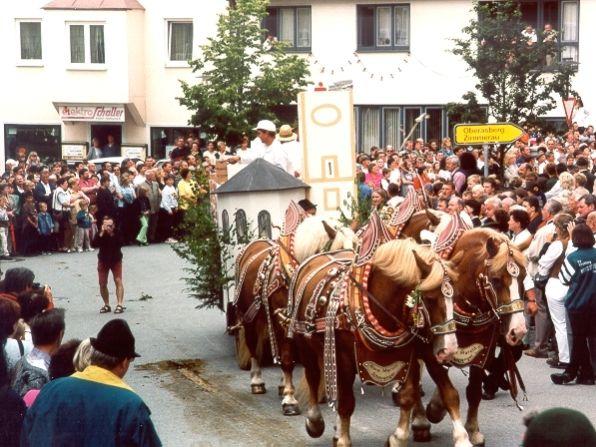 Prächtiges Pferdegespann beim St. Guntherfest-Festzug in Richnach
