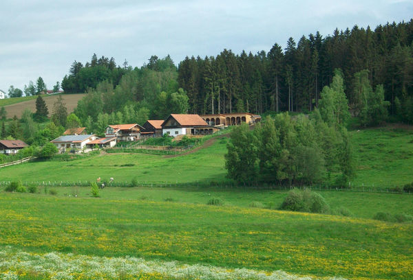 Wanderreitstationen bayerischer wald for Db ranch