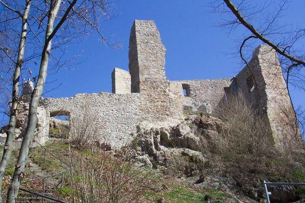 Blick auf die Burgruine Schwärzenburg bei Roding im Naturpark Oberer Bayerischer Wald