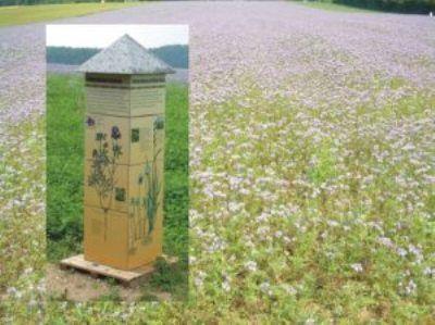Landwirtschaftlicher Erlebnispfad Böhringen