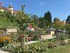 Rosenfeld Rosen- und Skulpturengarten