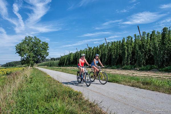 Hallertauer Hopfentour zwischen Enzelhausen und Osterwaal