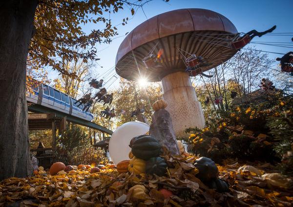 Halloween-Ambiente in Österreich