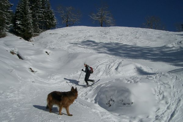 Schnee auf Geigelstein