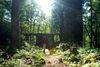 Wanderer bei der Burgruine Dießenstein bei Saldenburg im Bayerischen Wald