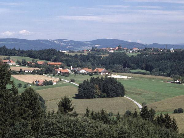 Der Name Salzweg deutet auf seine Vergangenheit hin. Der Ort liegt am sogenannten Goldenen Steig, der mittelalterlichen Salzstraße nach Böhmen.