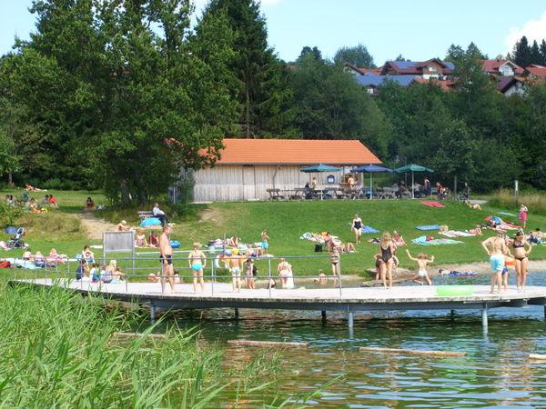 Wasserratten am Steg beim Naturbadesee im Kurpark in St. Englmar