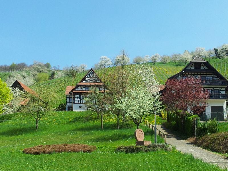Sonnengarten - oberer Kurpark | Sasbachwalden