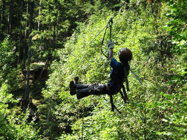 Hirschgrund Zipline Flug über die Bäume