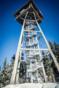 Riesenbühlturm