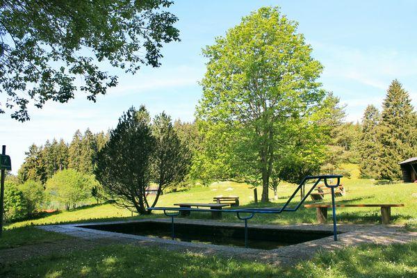Wassertretstelle Nähe Sportplatz Schluchsee