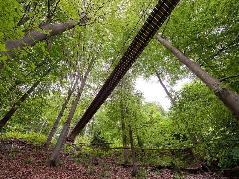 Rothaarsteig Karte.Hängebrücke Am Rothaarsteig Sauerland