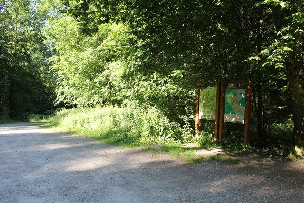 Impressionen des Wanderparkplatzes Buchhagen in Bad Fredeburg