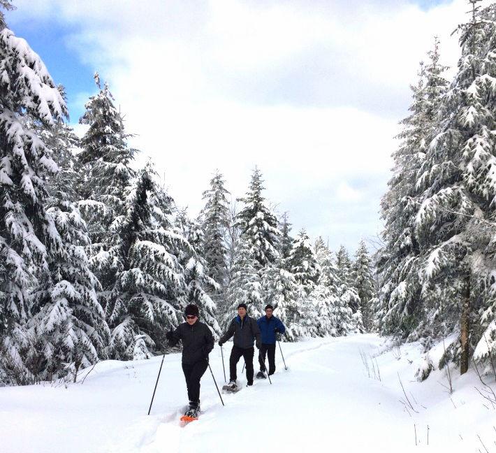 Schneeschuhwandern in Schöfweg in der Region Sonnenwald im Bayerischen Wald
