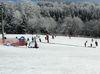 Förderband für Skifahrer und Rodler am Steinberg-Skilift im Skigebiet Sonnenwald