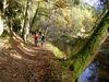 Traumhafte Radtour an der Ilz im Bayerischen Wald