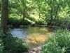 Zugang zum Bach beim Naturschutzgebiet Mitternacher Ohe bei Schönberg