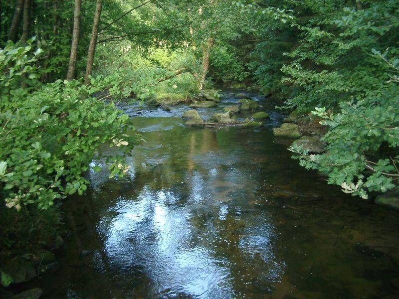 Romantische Flußlandschaft an der Mitternacher Ohe bei Schönberg