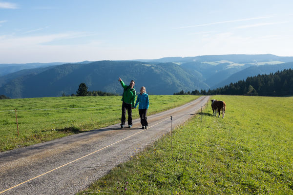 Wandererlebnis Schwarzwald
