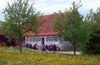 Besenwirtschaft (Gebäude 22a in der Weinlandschaft) im Hohenloher Freilandmuseum