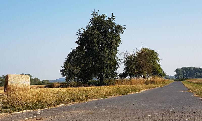 Schwalm Radweg