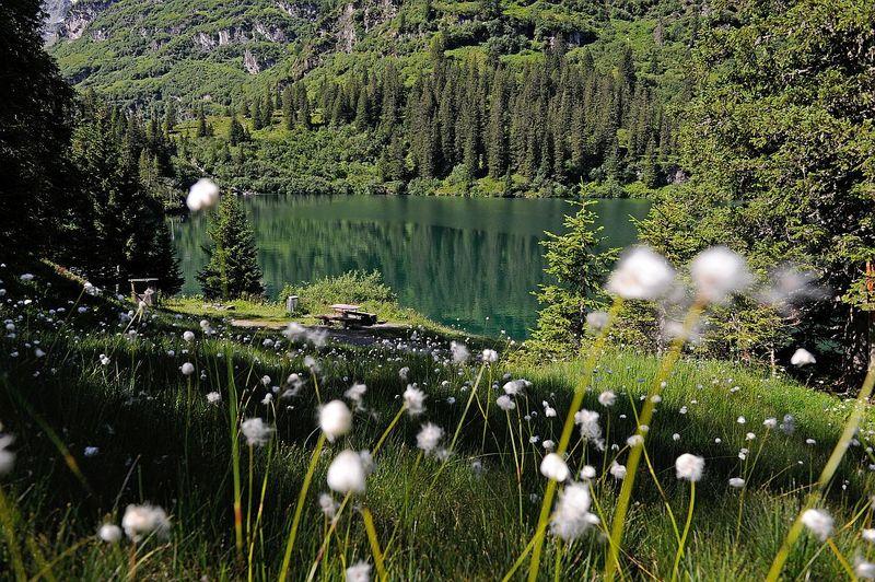 42 Kärpfwanderung Mettmen – Elm