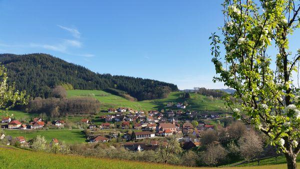Blick auf das Ortszentrum Seebach