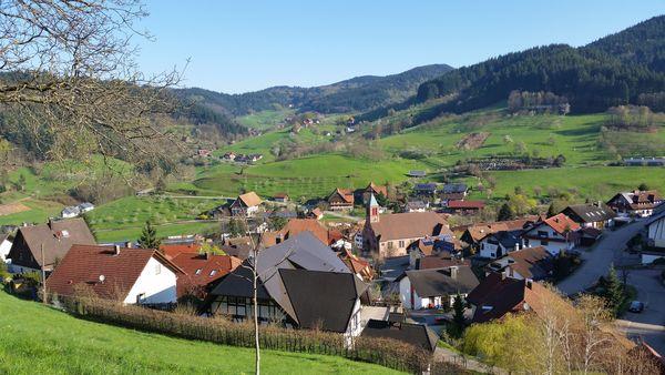 Blick auf Seebach und zum Grimmerswald