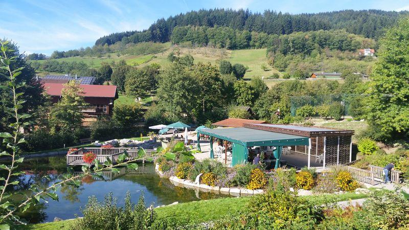 Blick in den Seebacher Kurpark