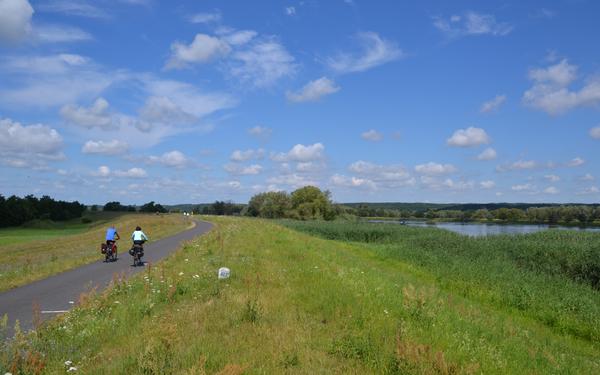 Radtour im Oderbruch, Foto: TMB-Fotoarchiv/Matthias Schäfer