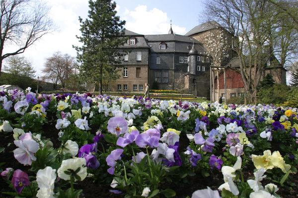 Frühlingsblumen vor dem Schloss