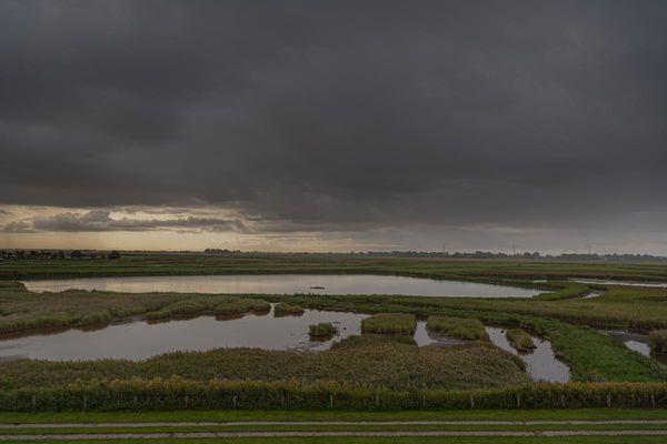 Blick auf das Naturschutzgebiet Wester-Spätinge