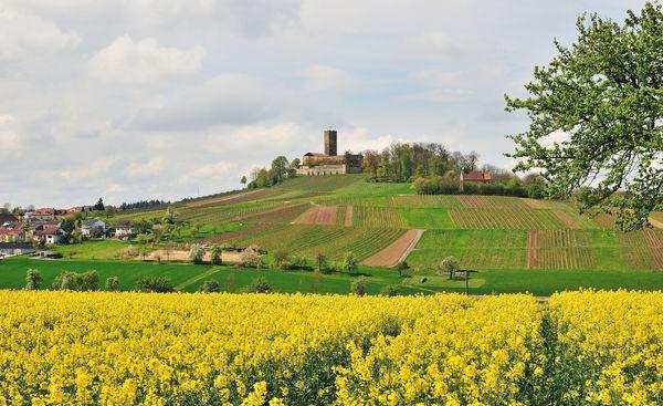 Blick auf den Steinsberg