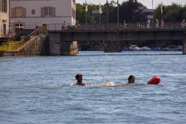 Aare Schwimmen