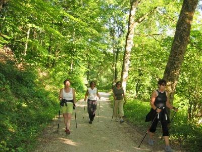 Waldsportpfad und Nordic-Walking-Pfad am Bloßenberg