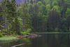 Der geheimnisvolle Rachelsee im Nationalpark Bayerischer Wald